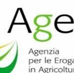 AGEA: responsabile per ritardata comunicazione della quota di produzione ammessa a contributo